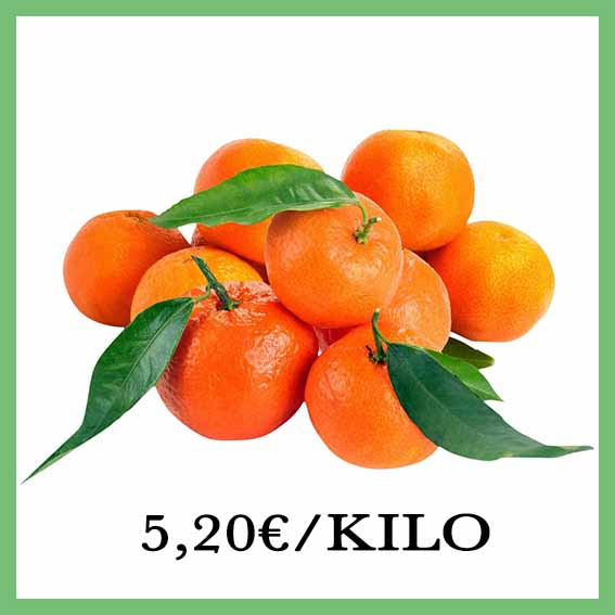 clementinecorse_1.jpg